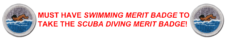 Swimming ATTN